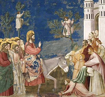 giotto - entrata di Gesù a gerusalemme